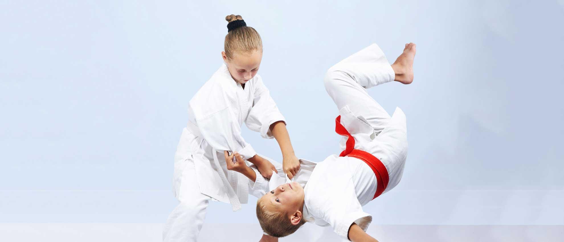 Banner novità judo
